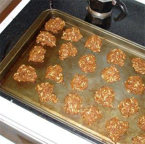 Gordon's Horse Cookies