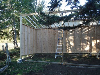 Horse shelter construction