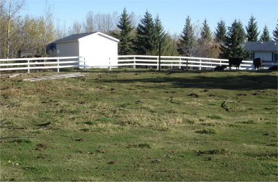 Spanky new fence